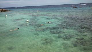 フィリピン セブ島旅行記 マクタン島リゾートエリア