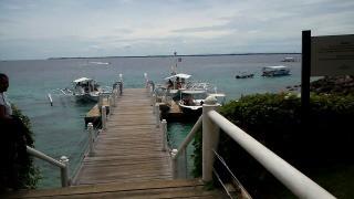 フィリピン セブ島旅行記 マクタン島ダイビング