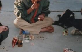 中国・チベット旅行記 ヒマワリの種早食い大会