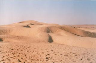camelsafari5
