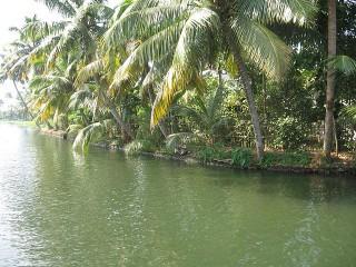 Backwaters1
