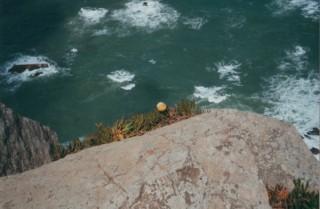 roca2