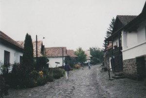holloko1